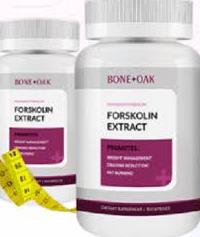 Bone + Oak Forskolin